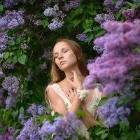 Сиреневый сад :: Ludmila Zinovina