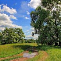 Синевою успокоив облака... :: Лесо-Вед (Баранов)