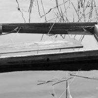 Весенний залив :: Кристина