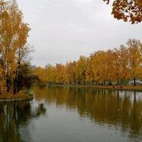 Осенний пруд :: Анатолий Цыганок