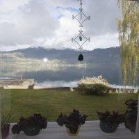 люблю заглядывать в окна :: liudmila drake