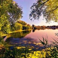 Теплое летнее утро на реке* :: Максим Иванов