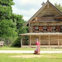 Лето в деревне Витославлицы :: Наталья Маркелова