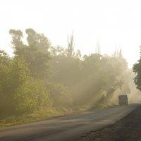 Утренний рейс :: Ксения Довгопол