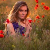 Фотосессия в маковом поле :: Сергей Дрон