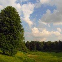 22 июня без войны :: Андрей Лукьянов