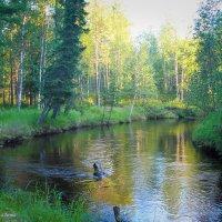 Река :: Анна Франкова