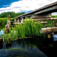 Старый мостик :: Анна Никонорова
