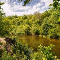 река Медведица в Саратовской области :: Андрей ЕВСЕЕВ