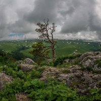 Адыгея :: anatoly Gaponenko