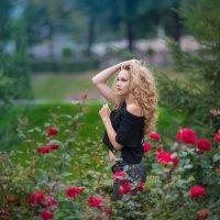 Сентябрьское вечернее :: Ludmila Zinovina