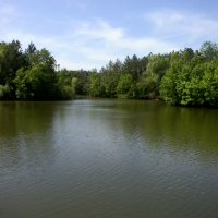 Красивое озеро :: Алла Балашова