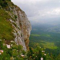 вид на долину :: Андрей Козлов