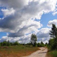 Дорога, облака... :: Антонина Гугаева