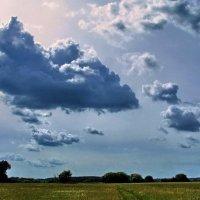 Дождём прошедшим светится затишье... :: Лесо-Вед (Баранов)