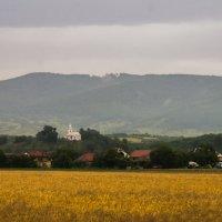 Украина-Закарпатье :: Сергей Форос