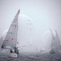 ежики в тумане :: Ingwar