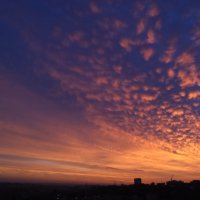 Утром :: Катура Мацумото