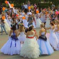 фотоохота на невест... :: Олег Петрушов