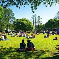 Летом в парке :: СэрЖ По