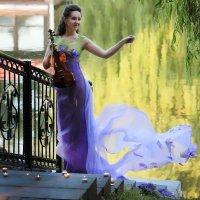 Неринга скрипка :: виктор омельчук