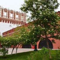 Кутафья башня. Кремль :: Владимир Болдырев