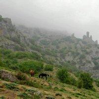 Долина привидений :: Виктор Заморков