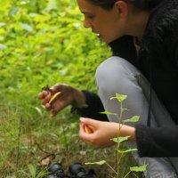 первый гриб в этом году. :: petyxov петухов