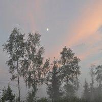 туман :: Нина Алексеева