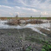 засуха :: Алексей -