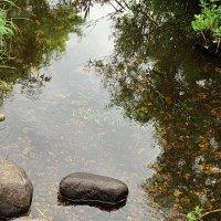 Речка Руя и её камни. :: Владимир Гилясев