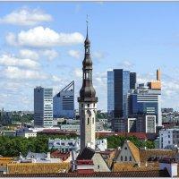 Tallinn 2015 :: Jossif Braschinsky