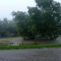Наводнение... :: Юлия Бабитко
