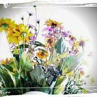 Лето , летом,  улетая.. :: Ирина Сивовол