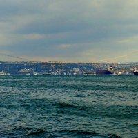 Стамбульский мост :: Елена Даньшина