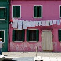 bright colors of Burano :: Sofia Rakitskaia