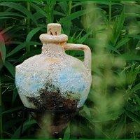 Он в траве густой... :: Владимир Гилясев
