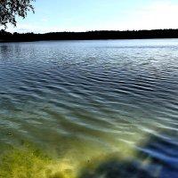 У озера :: rimgis