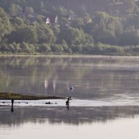 утро рыбаков :: Августа