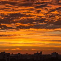 Небо над городом :: Elena Ignatova