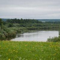 Река Тура (Меркушино) :: Алексей Обухов