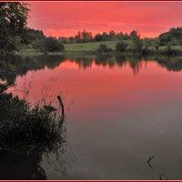 тишина в розовых тонах :: Дмитрий Анцыферов