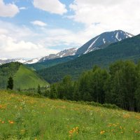 Восточный Казахстан, Риддер :: Марина Бухарина