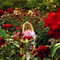 Цветы жизни :: Катерина Чебышева