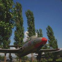 Учебный самолет Л-29 (Нижний Новгород, Парк Победы) :: Павел Зюзин