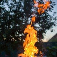 Пламя костра,приятный вечерок... :: Елена Нор