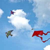 Фестиваль воздушных змеев.Ижевск :: Виктор Колмогоров