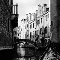 Venice in black-and-white :: Sofia Rakitskaia