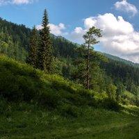 Пейзаж :: Никита Никитенко