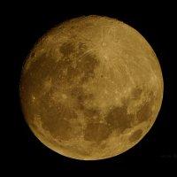 Луна :: Allex Anapa